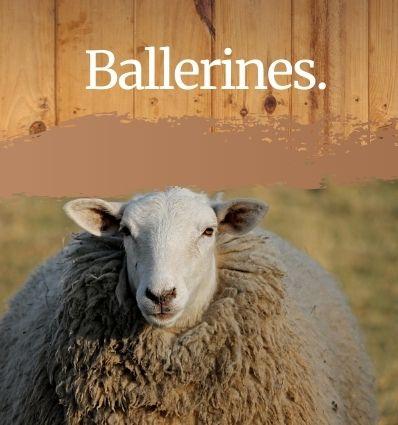 Ballerines Mouton